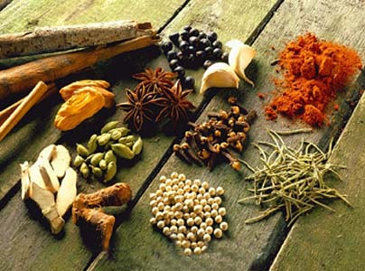 indian spices picture